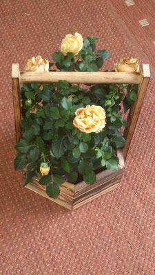 Blumenbrunnen als Hängeampel - Kundenbild aus Lübeck