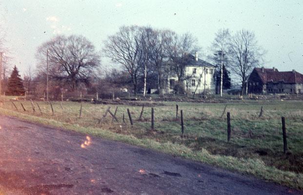 24 Vordergrund heutige Brüningheide, Siedlung Pestalozzistraße - Hinteergrund Villa Roberg