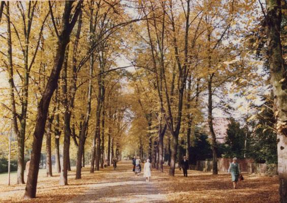 An der Promenade 1978