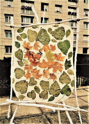 Chevalets arboréals - Roman Gorski