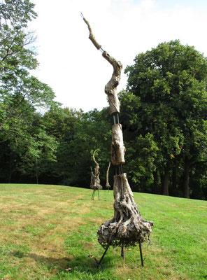 Trois arbres de ma planète - Roman Gorski