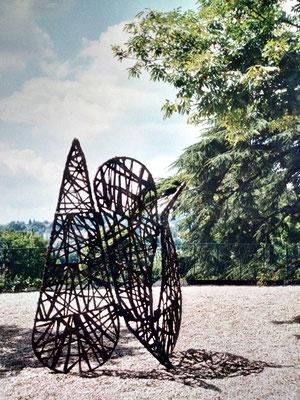 jardin de l'araignée - Roman GORSKI