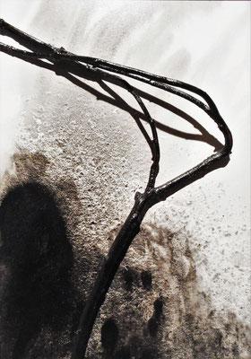 Brise de la mer - Roman Gorski