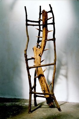 Plante dangereuse - Roman Gorski