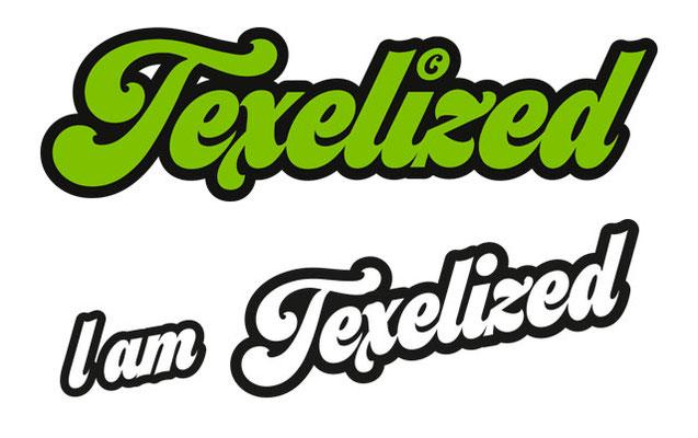 Texelized logo