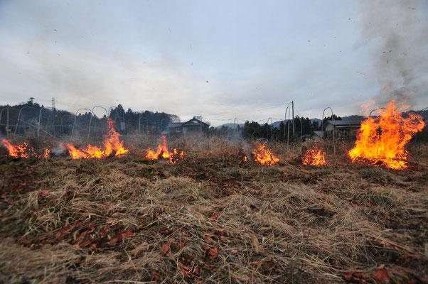 畑の野焼き。残った草木灰はミネラル成分が雨に溶けやすい状態になります。