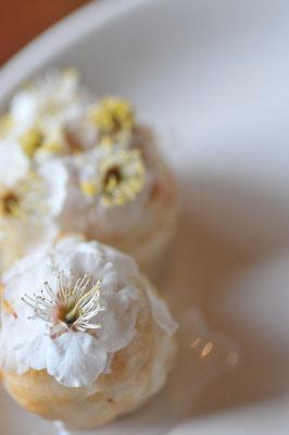 梅の花でふんわりたこ焼き