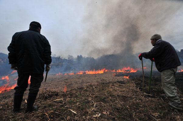 畑のそばの道志川の野焼き。護岸がないので壮大な光景。