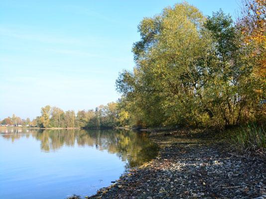 Der goldene Herbst am Wißmarer See
