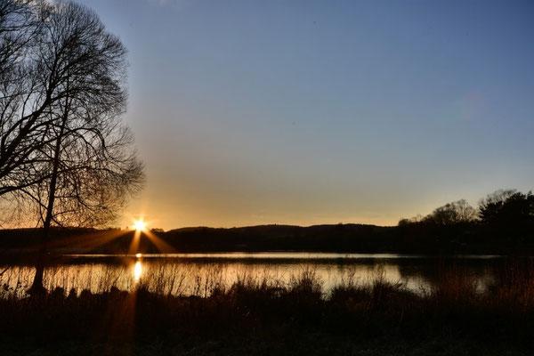 Sonnenuntergang am Wißmarer See in Wettenberg