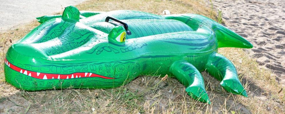 Krokodile am Strand vom Wißmarer See