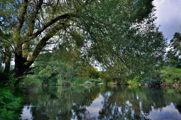 Herbststimmung am Wißmarer See