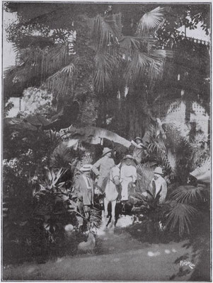 Die Beka Expedition im Palmenwald bei Kairo,  rechts Heinrich Bumb, Mitte in weiß auf einem Muli seine Frau