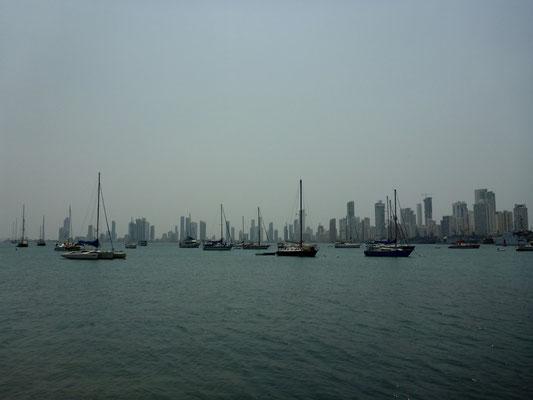 Der Yachthafen, da gibt es immer etwas interessantes zu sehen
