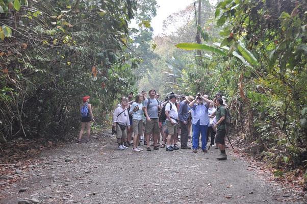 Gruppen von Touristen tummeln sich schon frühmorgens im Park