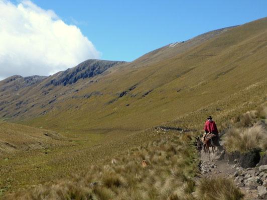 Reiter auf dem Inca Trail