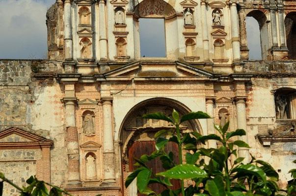 Kaffeeplanzen vor der Kirche