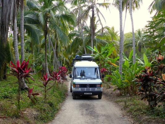 Fahrt an die Karibische Küste