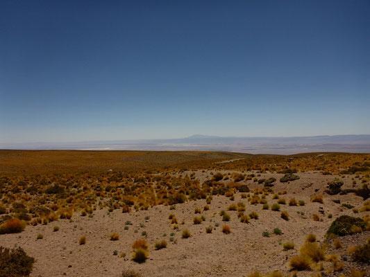 Blick über die Atacama Wüste