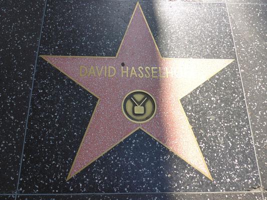 Viele Stars sind verewigt...