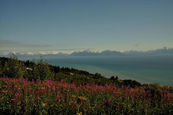 Ein schönes Bergpanorama