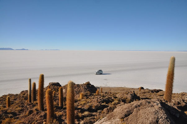 Aussicht von der Isla Incahuasi