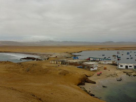Im Naturreservat auf der Halbinsel Paracas