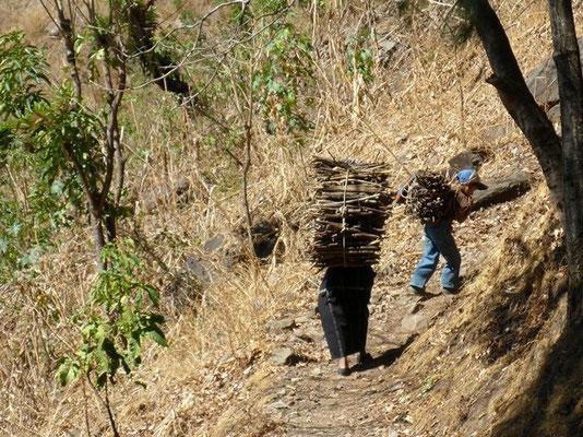 Tägliche Holzbeschaffung - wir bewundern diese Menschen