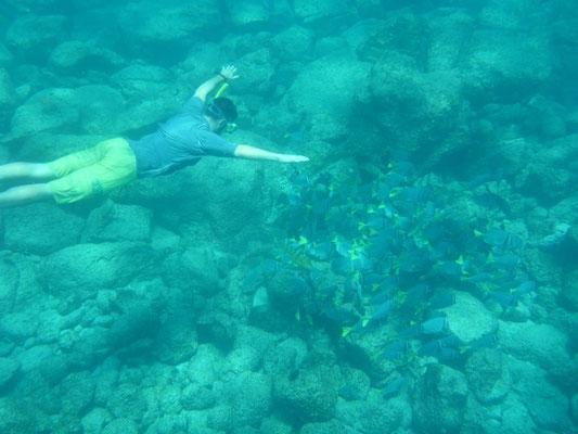 Flavio wäre am liebsten nur unter Wasser