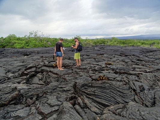 Wir laufen über Lava Felder