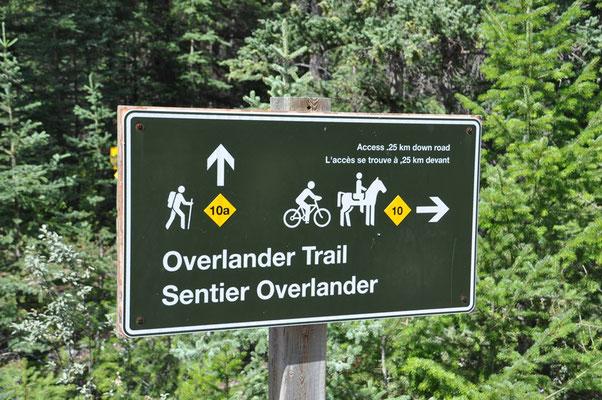 Das wäre ein Trail für uns...
