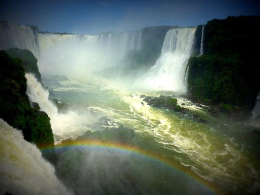 Regenbogen gibt es überall!