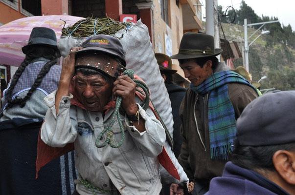 Träger auf dem Markt