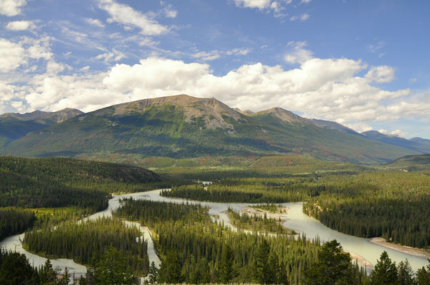 Berge, Flüsse und Wälder - Jasper