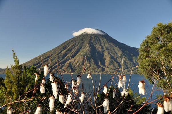 Der Vulkan San Pedro