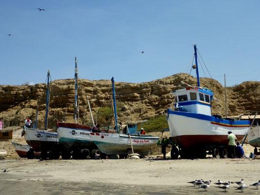 Fischfangboote