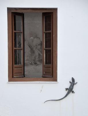 Lagarto de bronce. Proyecto de restauración de dibujos murales en la Sala de la Plancha. Casa de Alba. Aranjuez. Madrid.