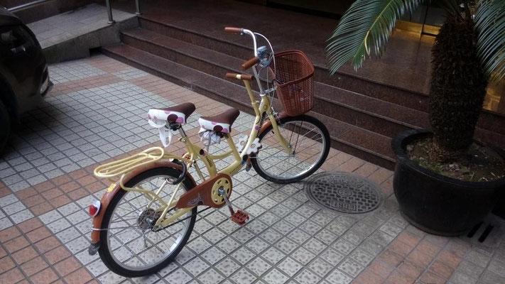 こういう自転車初めて見た。 前に子供が座って、後ろにお母さんが乗ってた。