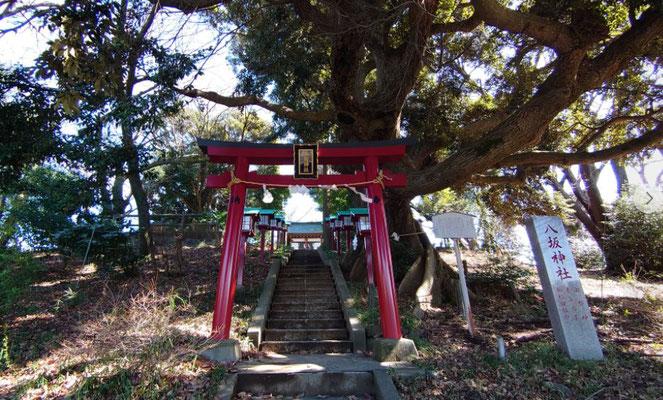 多摩市で一番標高の高い地点にある八坂神社。