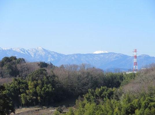 正山寺の裏山から見た「蛭が岳」と「富士山」  左の「蛭が岳」も、うっすらと雪をかぶっています。