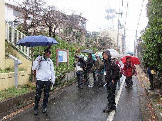 鎌倉街道の看板の前で