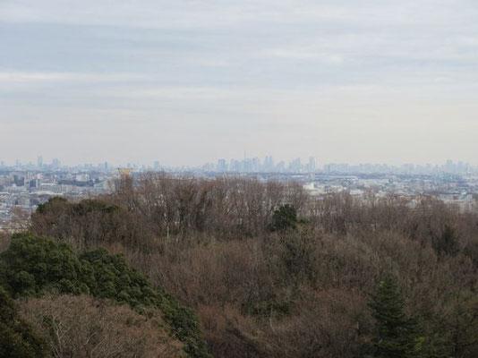見晴台からの眺望  東京スカイツリーや都庁・新宿の高層ビル群が見えます。