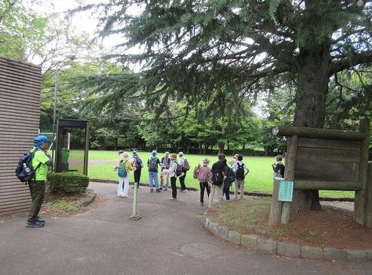 連光寺公園  都立桜ヶ丘公園に隣接する公園でテニスコートや子供用の遊具施設があります。