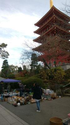 高幡不動  第三日曜日だったので、ござれ市 (骨董市)が開催されていました。
