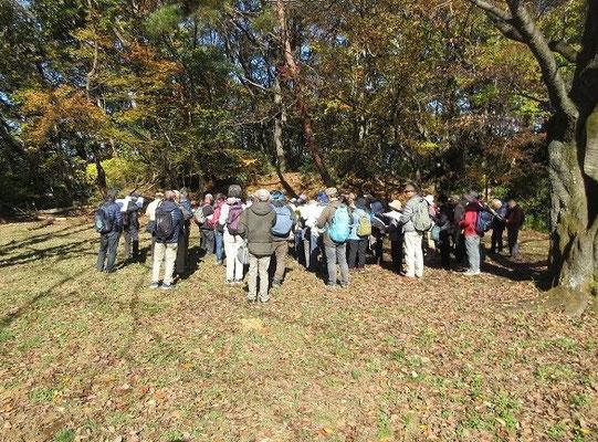 小田野城跡   郭(くるわ)はけっこう広く、120m×60mほどもある。 昭和53年の教育委員会の調査で戦国末期のものと思われる遺構が確認され、 都道61号線をトンネルに変更した。