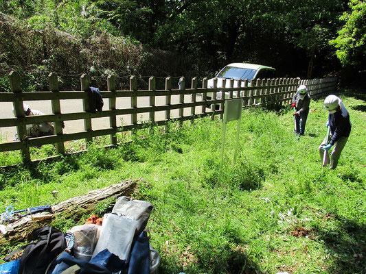 草刈り状況―1