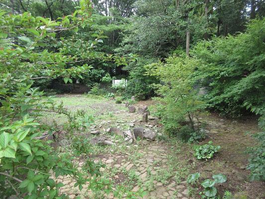 下谷戸縄文遺跡 環状列石及住居跡  東名高速道路の建設に伴い、発掘調査が行われ、張出し部を持つ柄鏡(えかがみ)形の敷石住居址、環状配石、環礫方形配石遺構、墓壙群(ぼこうぐん)等が見つかり、昭和42年5月13日に移築、復元されたものです。