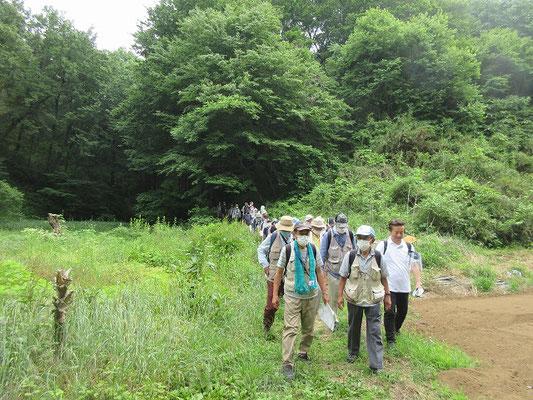 別所バス停、小野路バス停、妙桜寺方面へ 大犬久保谷戸から三方向に分かれて帰りました。