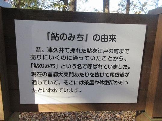 あゆの道  鮎のみちは別名を津久井往還。  津久井でとれた鮎を江戸の街まで売りに行く行商人が歩いていた道。