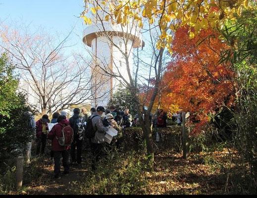 山王塚(よこやまの道終点)  山王塚跡には、鶴見川流域最高度三角点「山王塚」(168m)があります。  京都の三条河原に晒された源義朝の首を当地に移し、埋葬した塚が山王塚である、 という伝説がある。